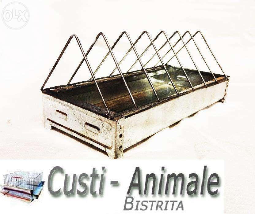 Hranitori porumbei Custi-Animale Bistrita