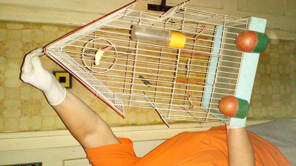 Красива Клетка за папагали- всички принадлежности, дръжка за пренасяне
