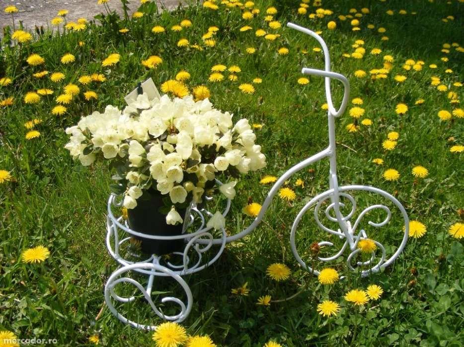 suport bicicleta alba flori