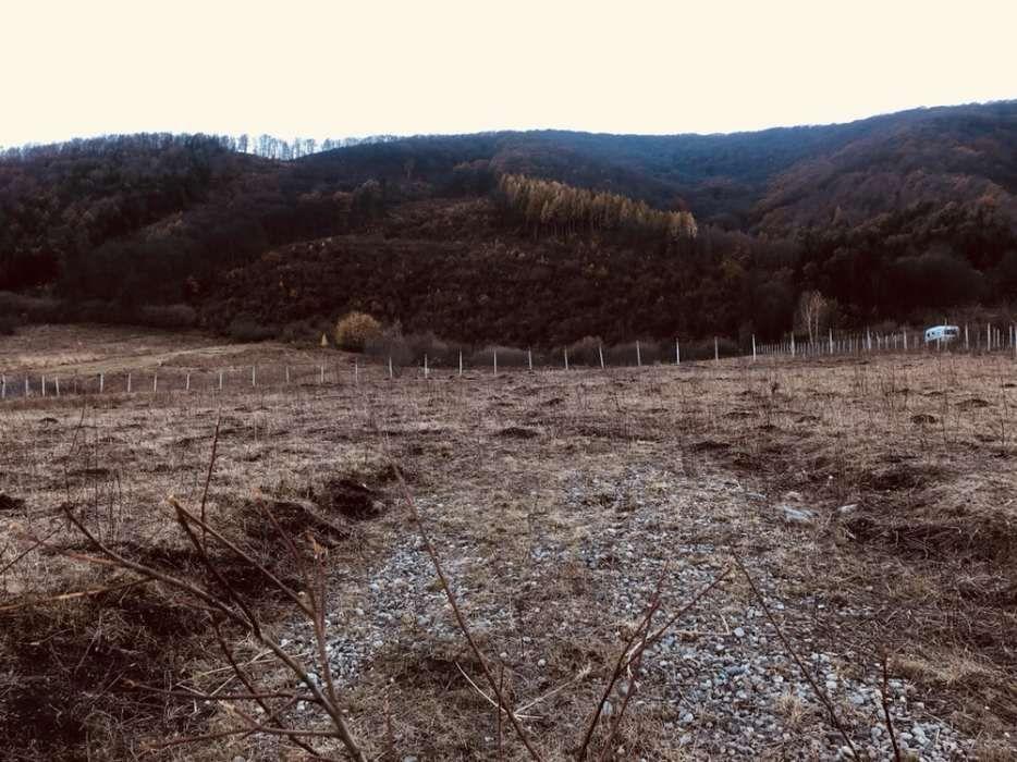 Vanzare  terenuri constructii Sibiu, Orlat  - 0 EURO