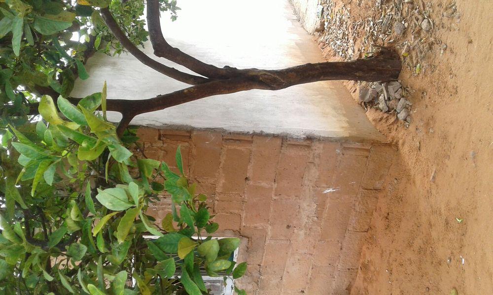 Terreno para Bombas ,supermercado,clinica,condominio,esta no xikelene Magoanine - imagem 5