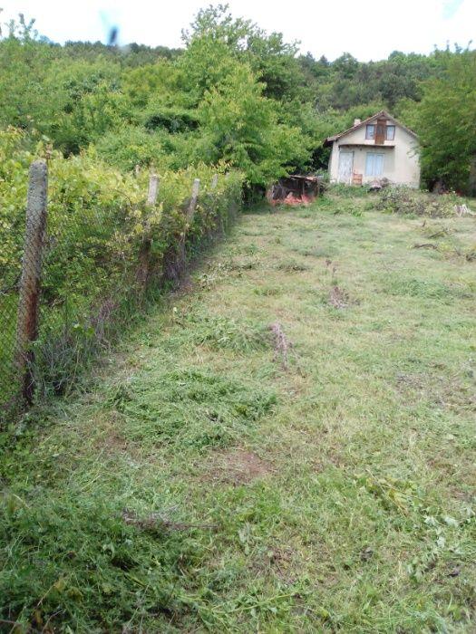 Почистване на дворни места и вилни имоти. гр. Варна - image 6