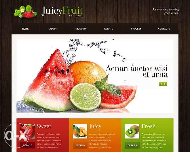 Websites, Gráfica, Comunicação e Imagem
