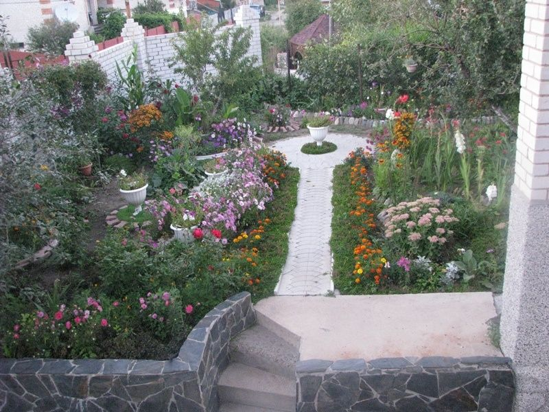 Элитные адаптированные саженцы деревьев,кустов,ягод,цветов.