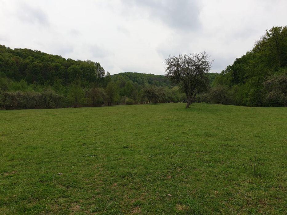 Vanzare  terenuri constructii  12 ha Valcea, Ocnele Mari  - 99000 EURO