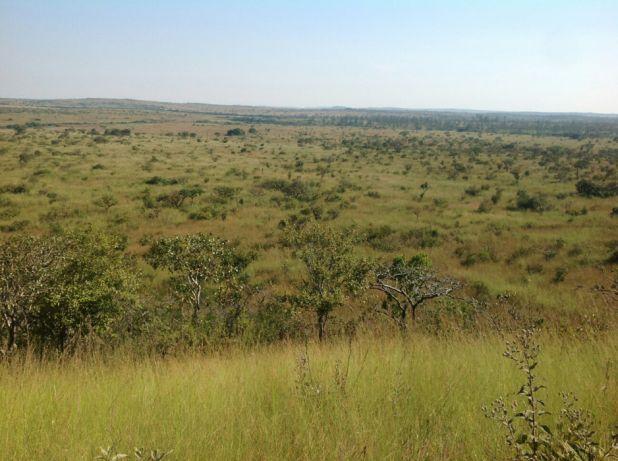 Venda (Angola–Luanda): Fazenda 1000 HECTARES, Samba Cajú, Kwanza Norte