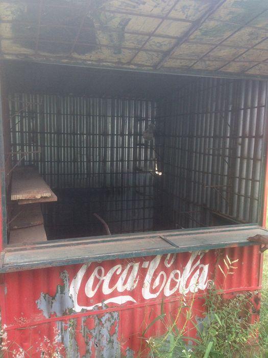 Vendo barraca móvel Alto-Maé - imagem 6