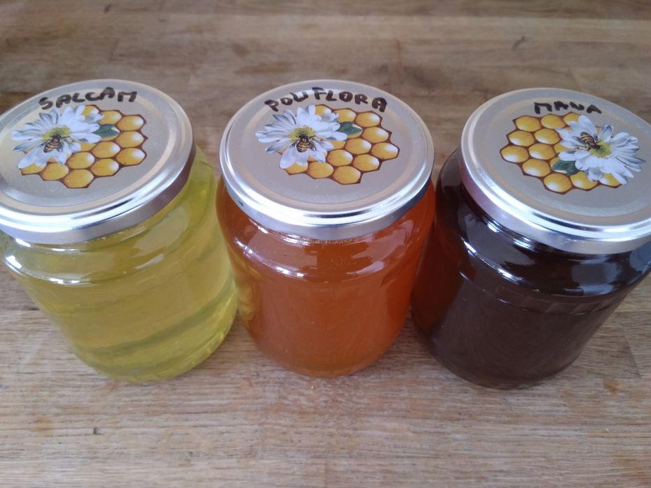 Producator vand miere: poliflora, salcam, mana. LIVRARE GRATUITA-Cluj