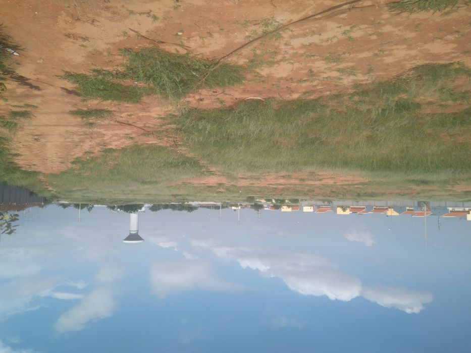 Vende se este terreno de 150 hectares está por detrás da TPA