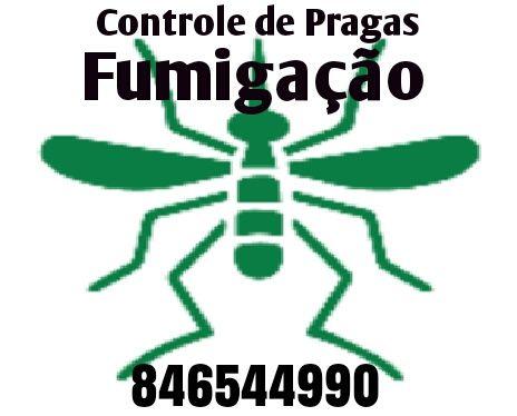 Controle da praga de mosquitos