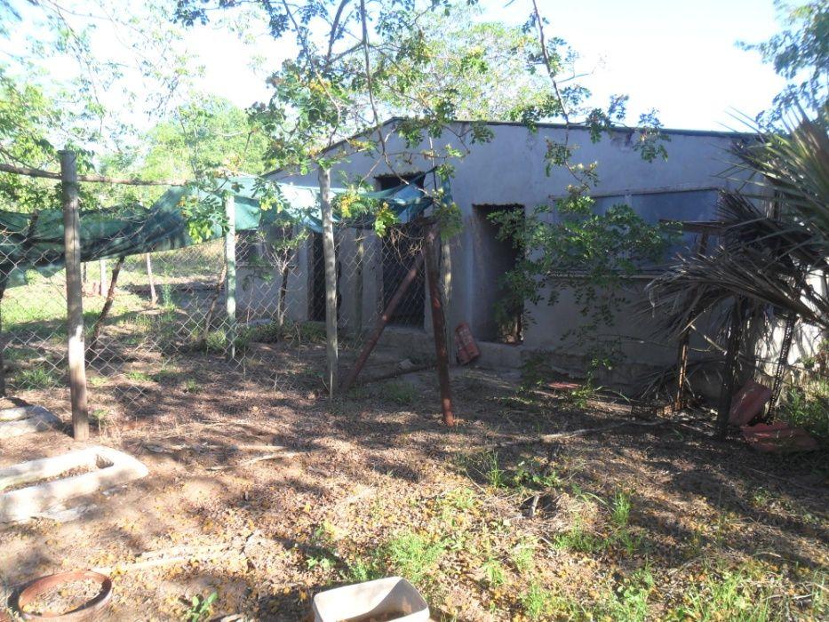 vende- se quinta com 9hectares/com duat em Mahoche-moamba Cidade de Matola - imagem 6