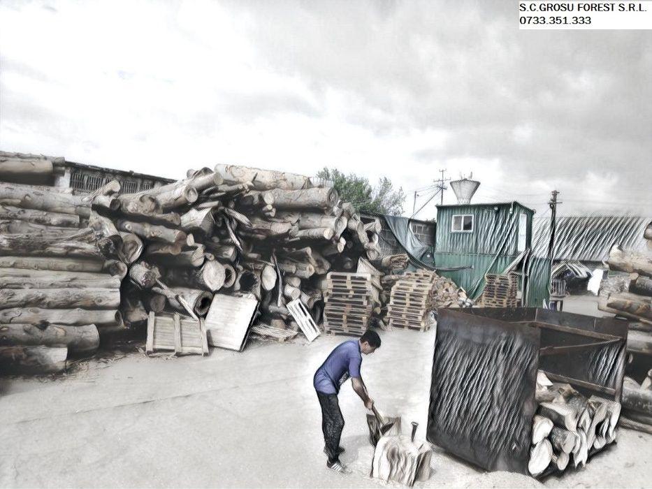 Vand lemne de foc / brichete de rumegus carbuni
