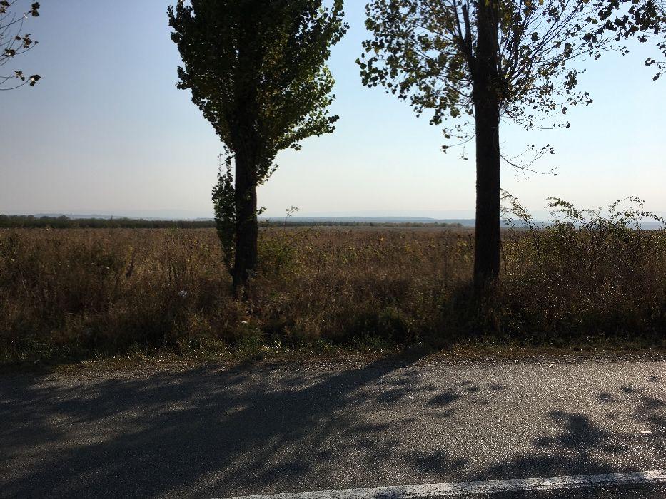 Inchiriere  terenuri agricol Iasi, Valea Ursului  - 0 EURO lunar