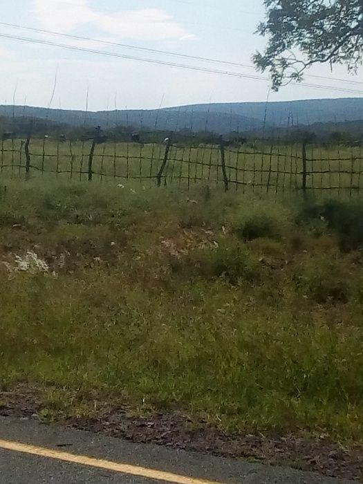 Vende-se terreno em Namaacha Goba 100/50