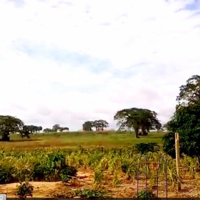 Vendemos Vivenda Terreno Icolo e Bengo Caretw