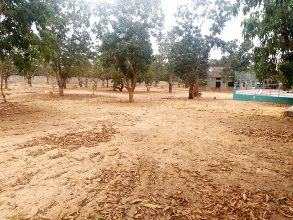 Vendemos Terreno de 3 Hectares no Kikuxi Segunda Linha