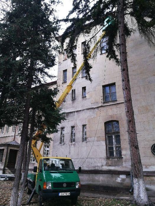 Рязане и кастрене на дървета