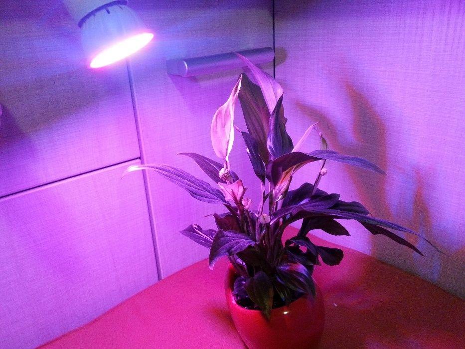 Becuri LED lumina crestere plante, spectru solar