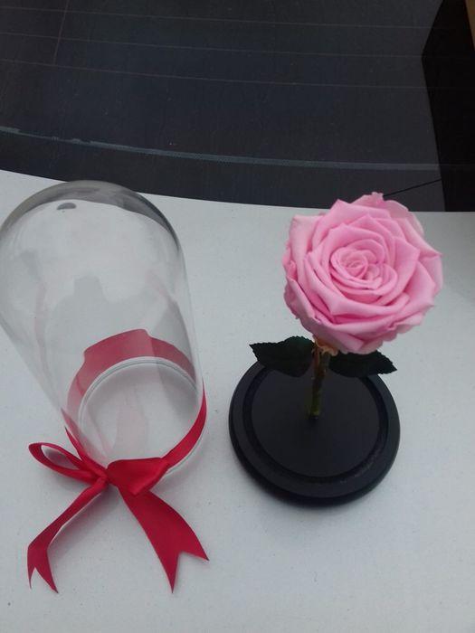 Cadou zile onomastice trandafir criogenat conservat Bucuresti - imagine 3