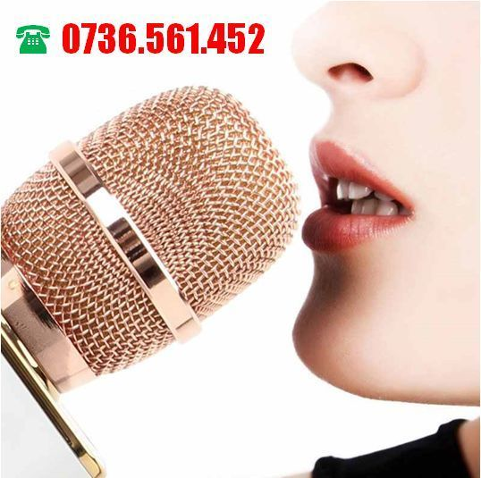 Microfon Wireless Karaoke cu Bluetooth, Boxa si USB