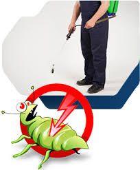 Desinfecção e Desinfestação com Garantia