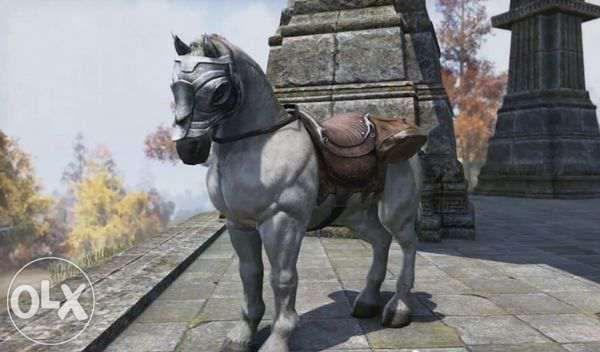Продам лошадей откормленных