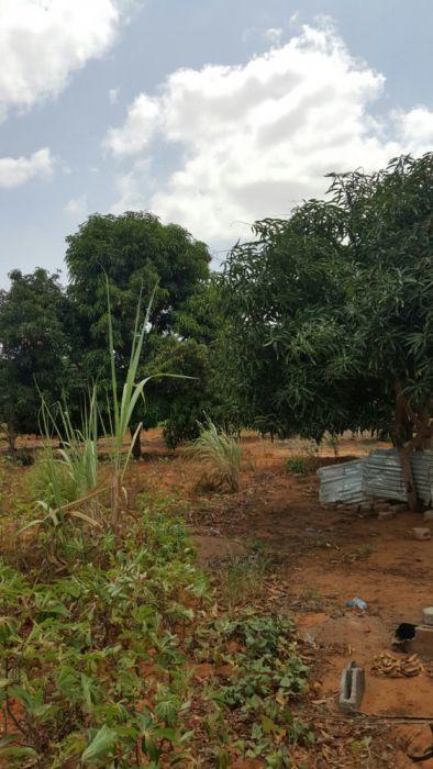Vende-se terreno nu kikuxi
