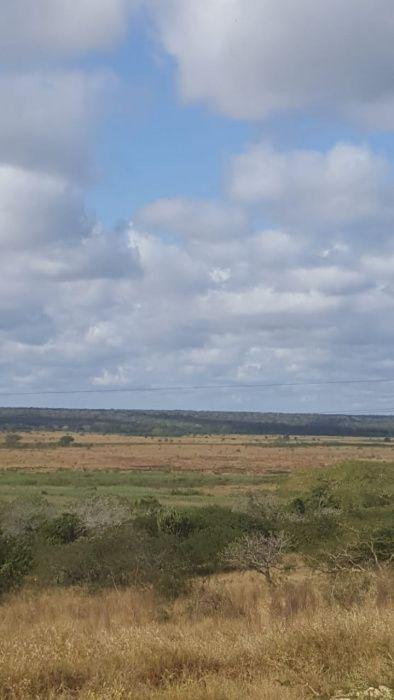 475 hectares salamanga
