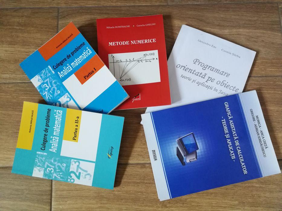 Culegeri Facultate Analiza Matematica / Metode Numerice / Grafica