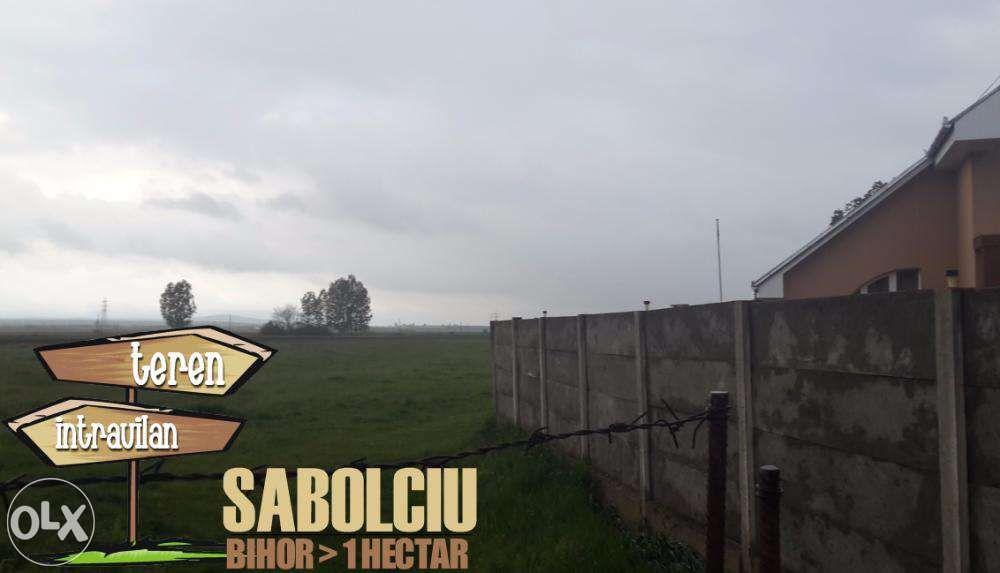 1 Hectar intravilan 20 km de Oradea