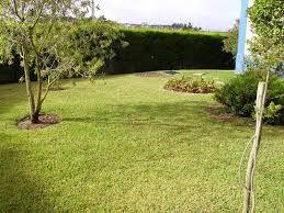 Construção e Manutenção de Jardins em MAPUTO & MATOLA