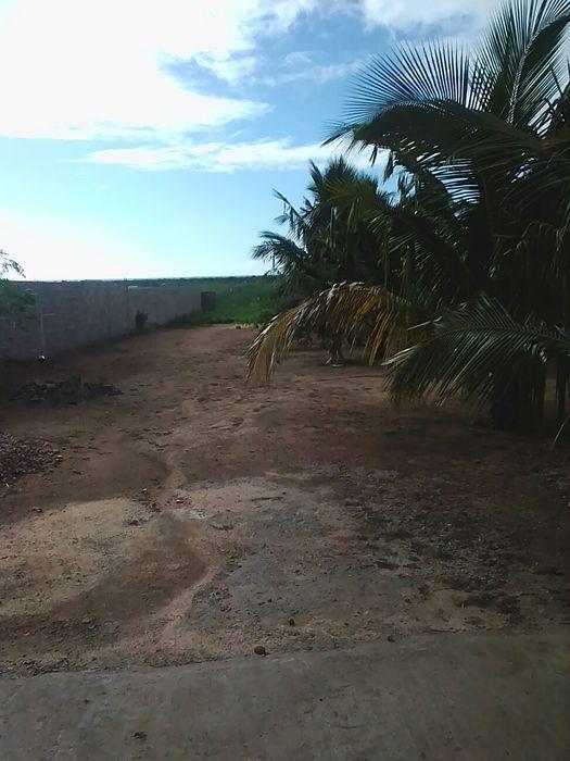 Vende se uma quinta no belo horizonte perto do estg. Boane - imagem 5