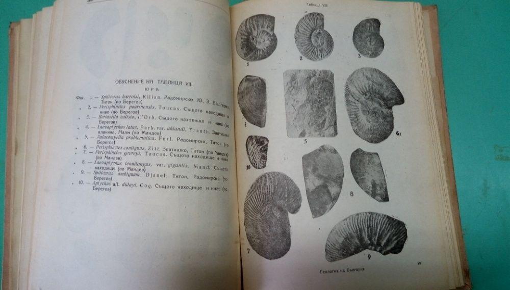 Основи на геологията на България - Сборник - издание 1946г. гр. София - image 4