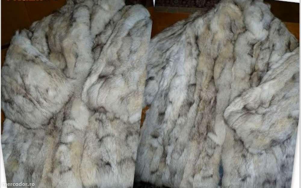 Haina de blana vulpe polara + CADOU!