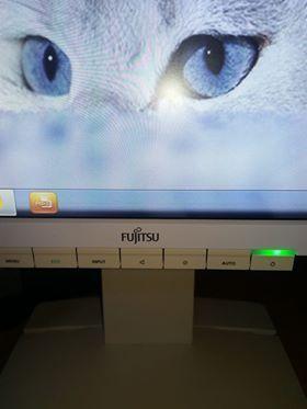 Monitor Fujitsu
