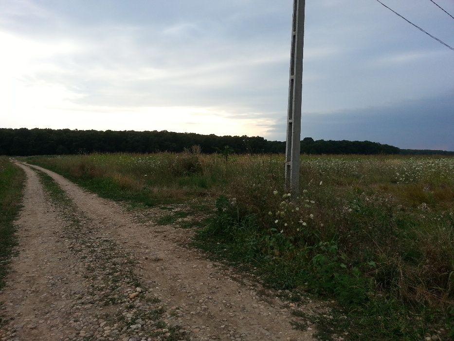 Vanzare  terenuri constructii Giurgiu, Cosoba  - 0 EURO