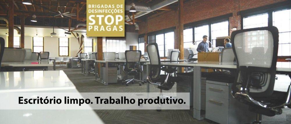 STOP PRAGAS: Escritorio Limpo | Trabalho Produtivo