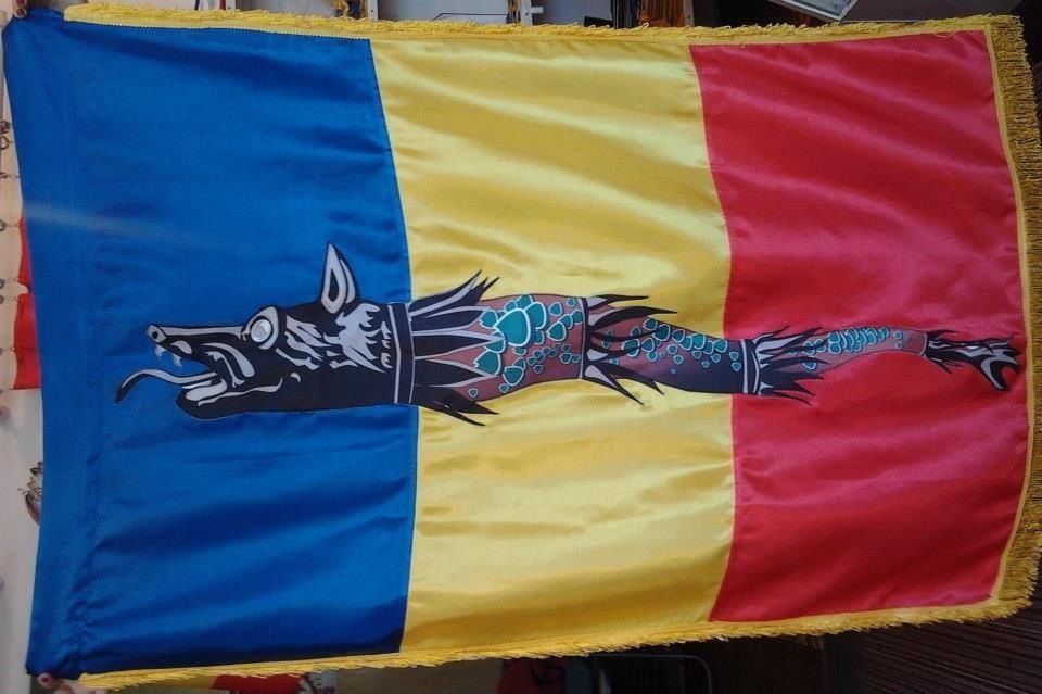 Steag dacic pe tricolor