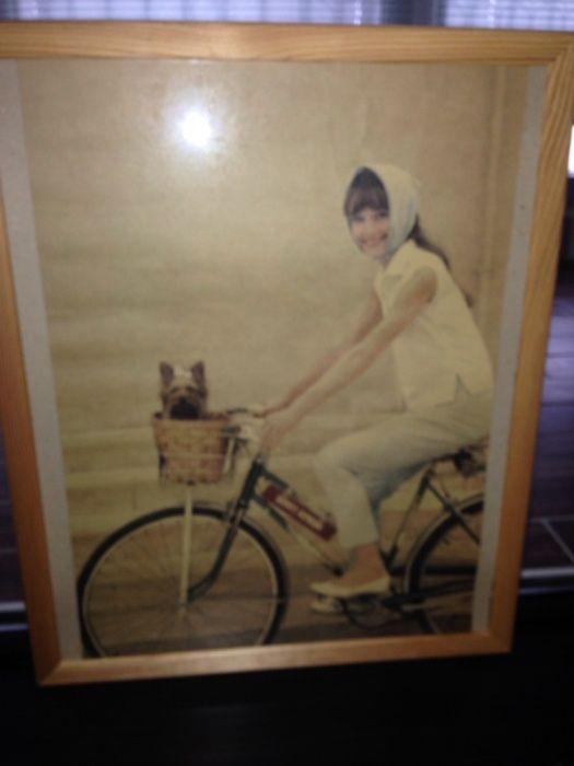 Картина Одри Хепберн с Йоркширским терьером