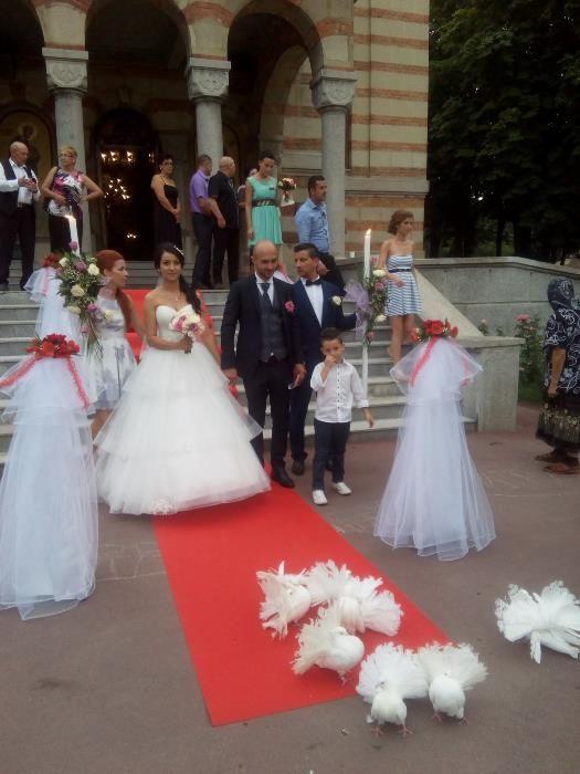 porumbei nunti