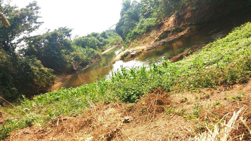 Quinta de 10 hectares 20.000.000kz ao lado da estrada e do rio