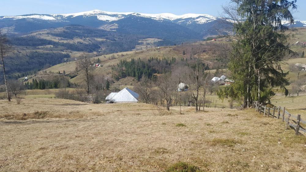 Vand 3 hectare teren, padure si casa, in comuna Arieseni, jud Alba
