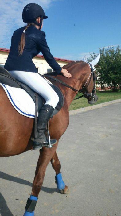 Брюки - легинсы, для занятий конным спортом