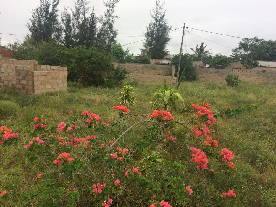 Romao 50X80.Vedados. Maputo - imagem 3
