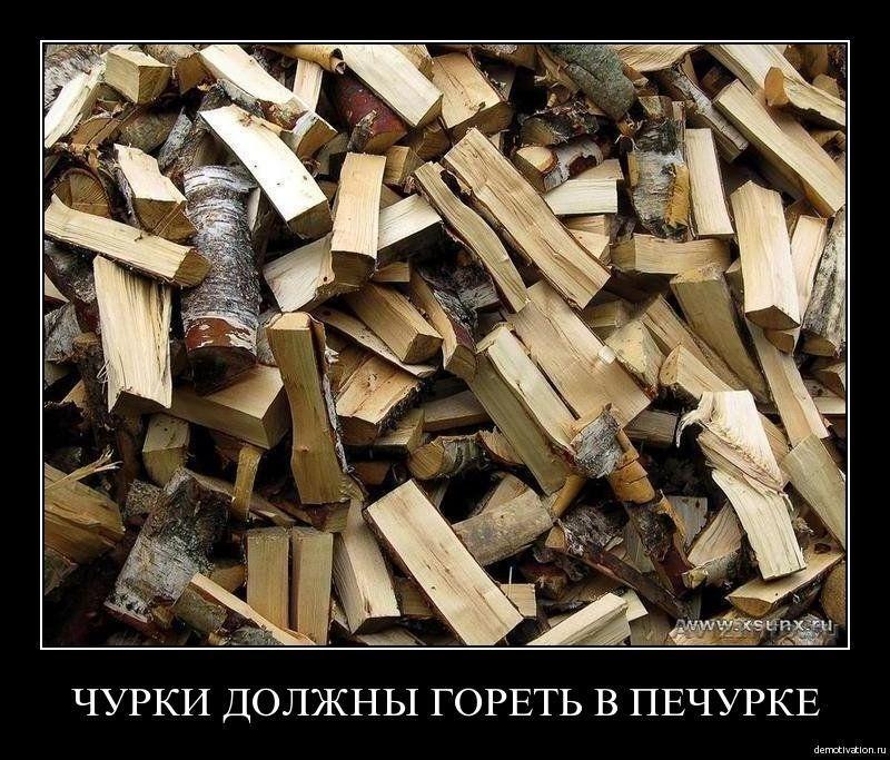 Продам дрова, Оптом и в розницу