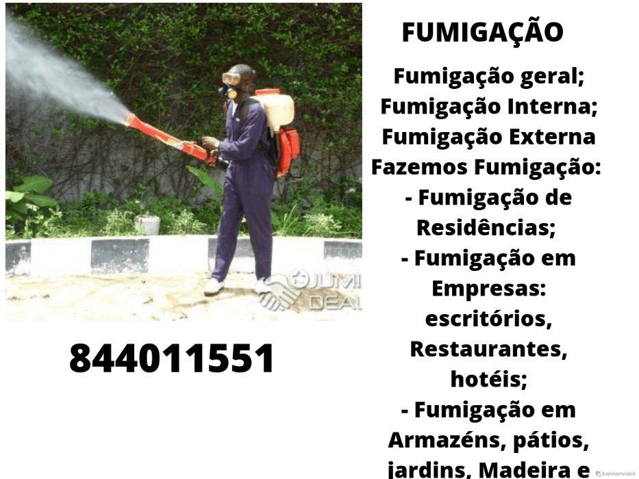Controlo de Pragas & Fumigacao (PREÇO DE NATAL)