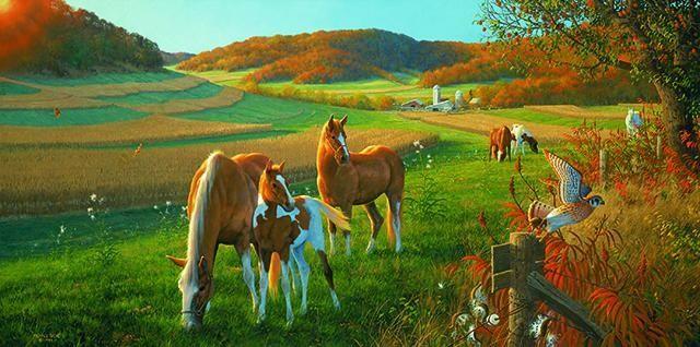 Зем. участки: 2,0 Га и 4,5 Га. Сельхоз назначение.