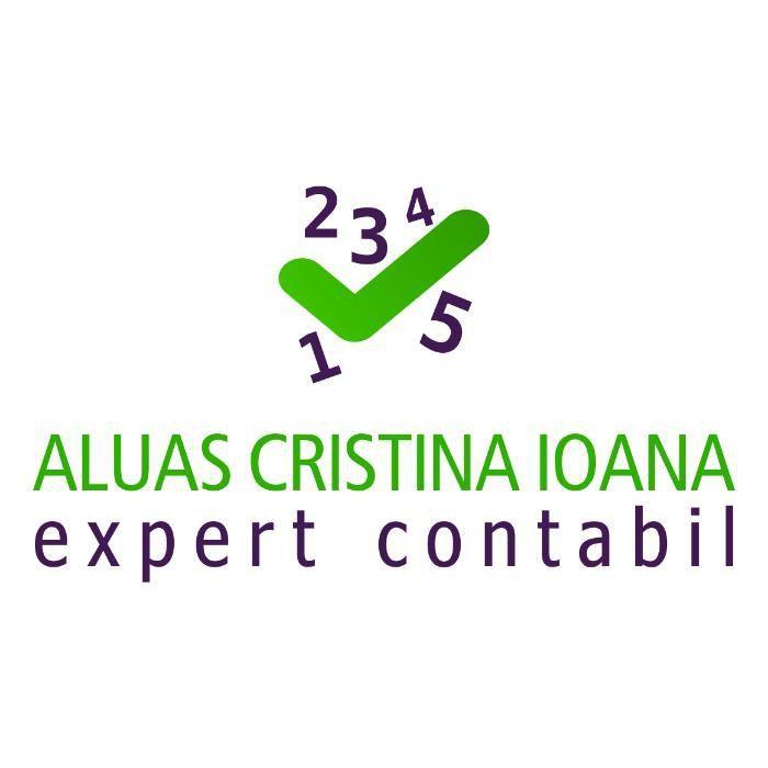 Expert contabil