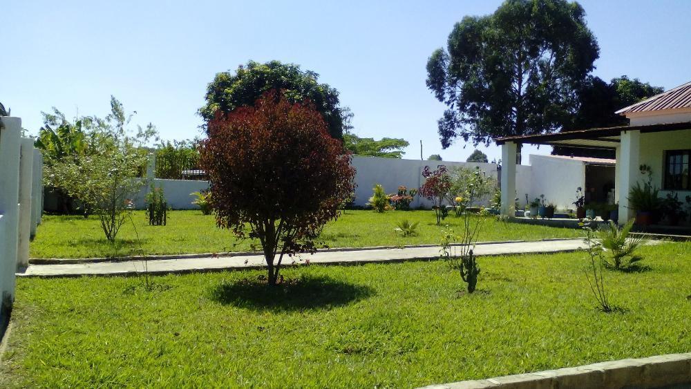 Fazenda com moradia T3 com painéis solares e muito terreno