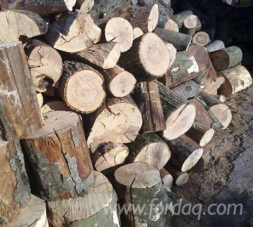 Vand lemne de foc esenta tare!